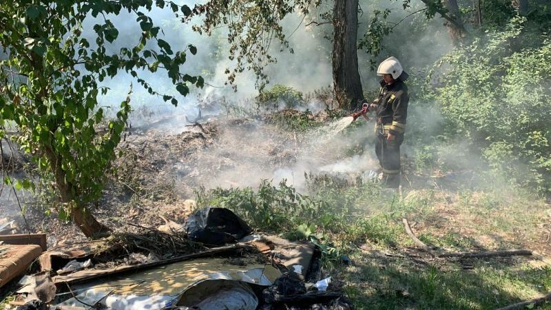 Сотрудники МЧС России предупреждают: сжигание тополиного пуха может привести к беде!